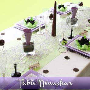 Décoration de table parme, vert anis et chocolat
