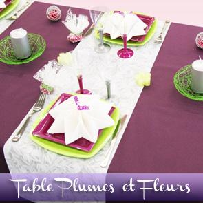 Décoration de table prune et anis