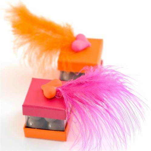 I-Grande-25661-20-plumes-orange.net.jpg