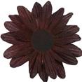 Fleurs sans tige, chocolat