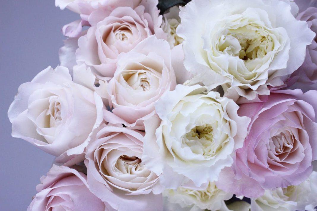 Fleurs pastels pour déco de table